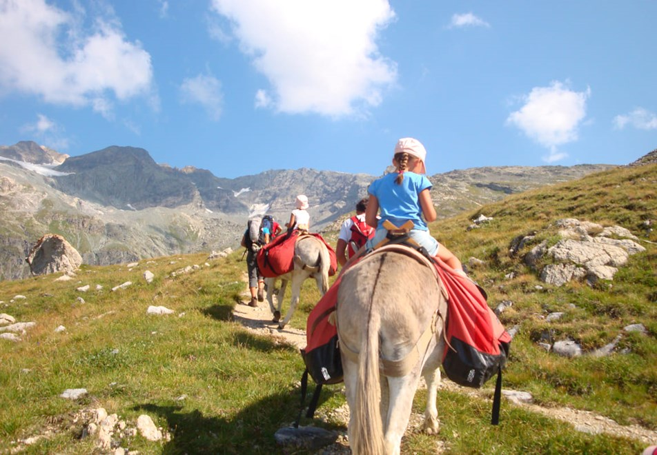 Les Arcs Resort - Horse riding