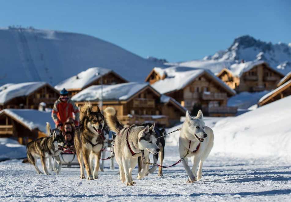 Alpe d'Huez Ski Resort (©Laurent-Salino) - Dog sledging