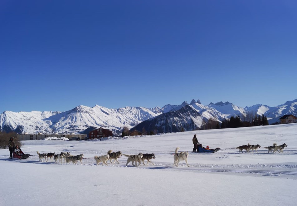 La Toussuire Ski Resort - Dog sledding