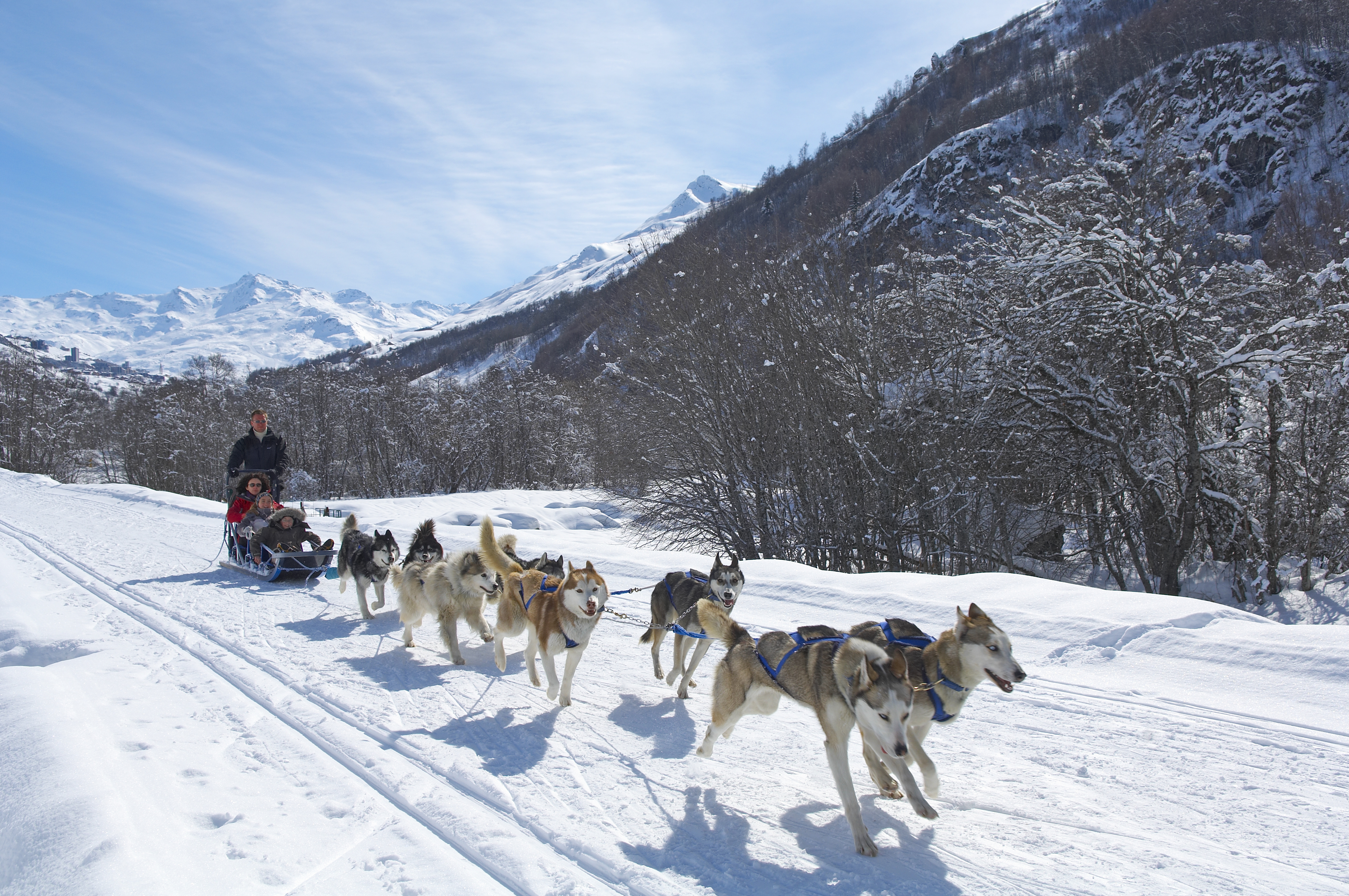 St Martin Dog Sledding