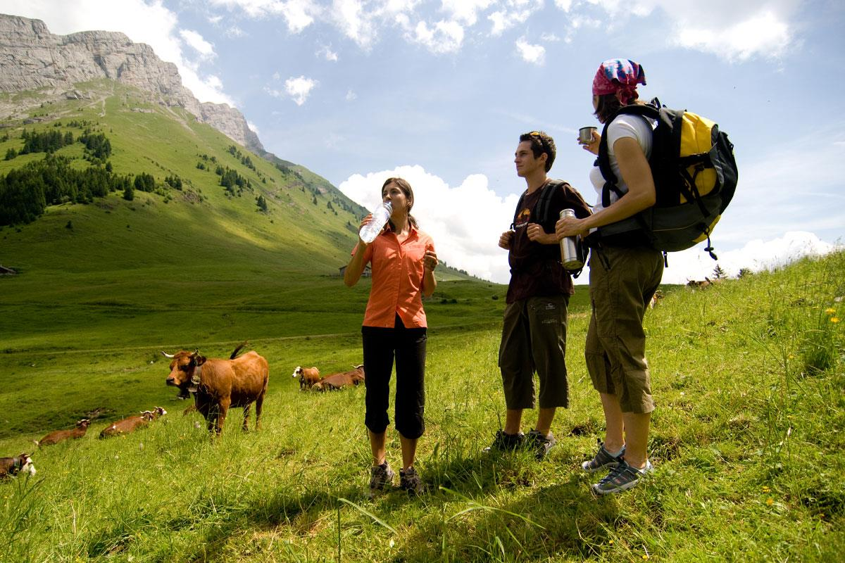 FAQ & Contact Us - French Alps Summer Holidays