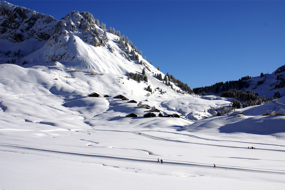 Praz de Lys - Cross Country Slopes