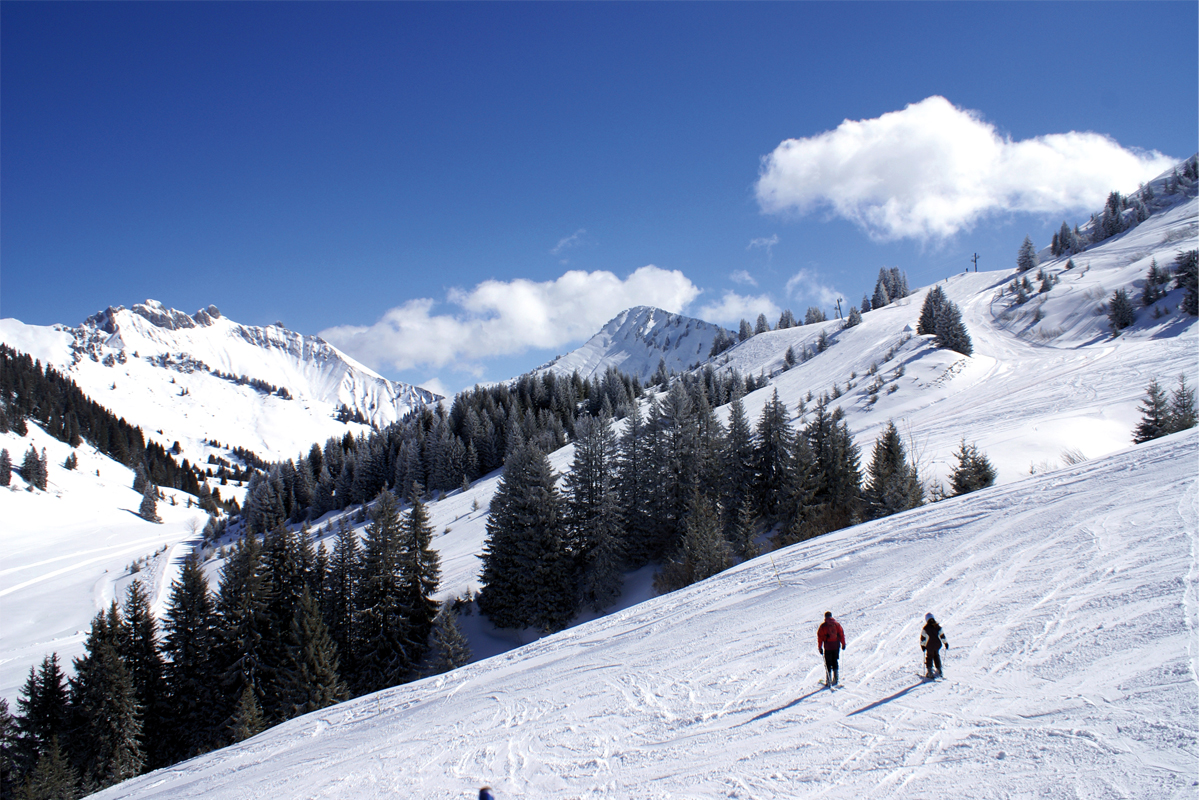 Praz de Lys - Alpine Slopes
