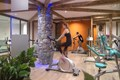 Kalinda, Tignes 1800 (self catered apartments) - Gym