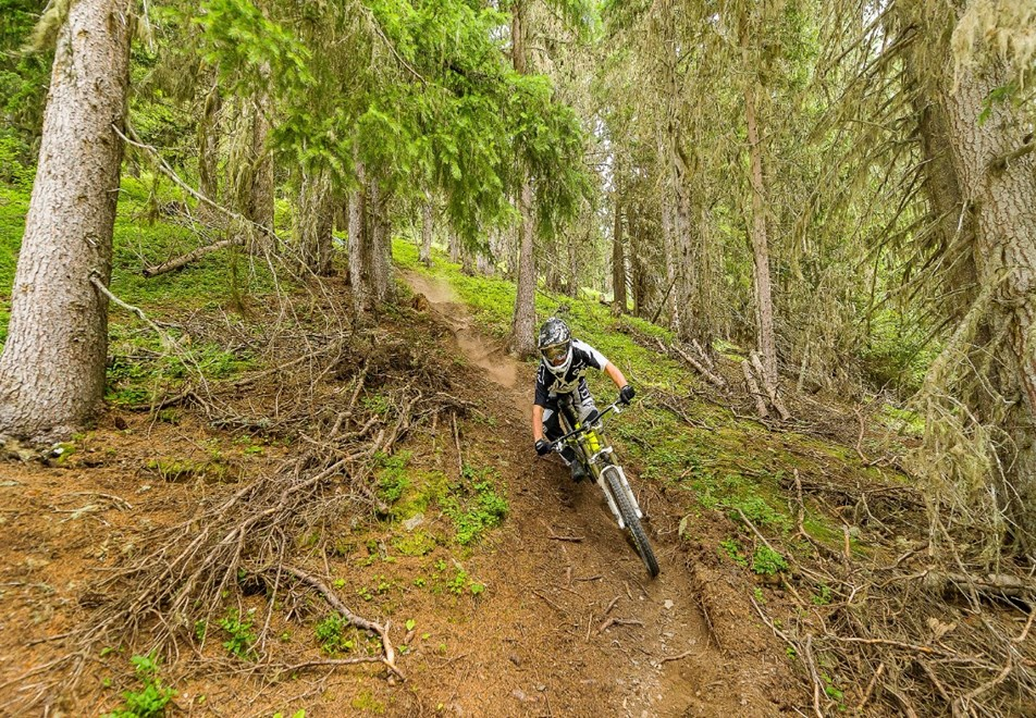 Peisey Vallandry Village - Mountain biking