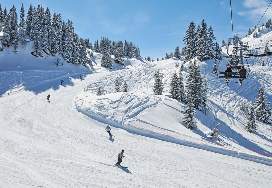 Areches-Beaufort tree-lined ski slopes